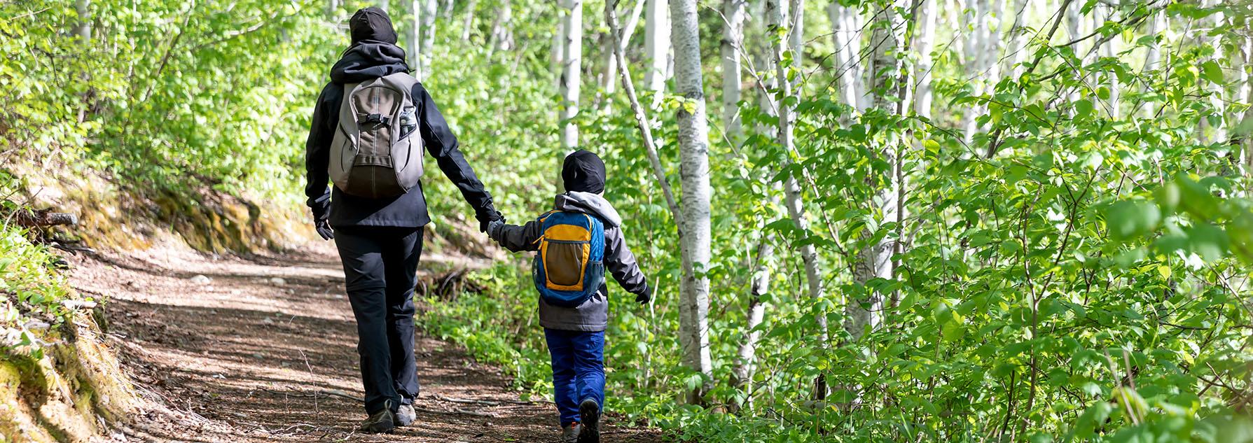 Un parent et un enfant marchant dans la forêt, se tenant par la main